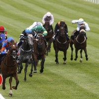 HOME-OF-THE-BRAVE winner-of-the-Gr3-Minstrel-stakes